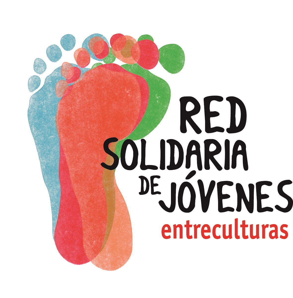 logo red solidaria